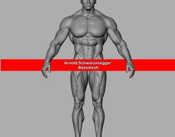 3D model Arnold Schwarzenegger Basemesh