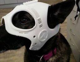 Dog Ranger Spy Helmet Stl mask File 3D printable model