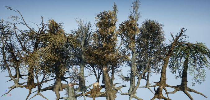dead tree collection all in one 3d model low-poly fbx tga 1