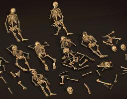 remains skeleton bone big pack 3d model realtime
