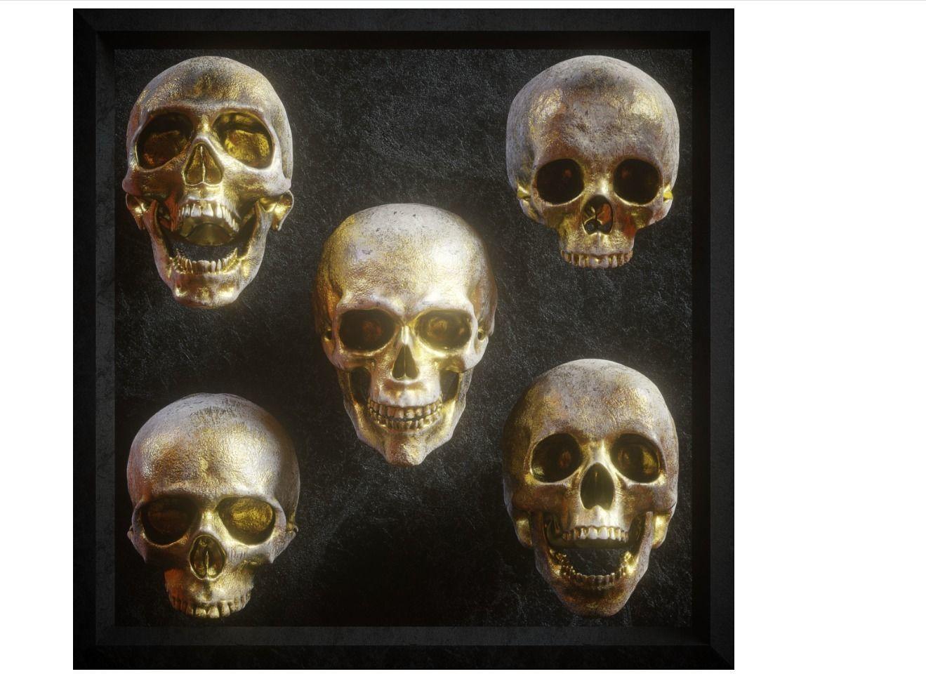Skull Model Pack