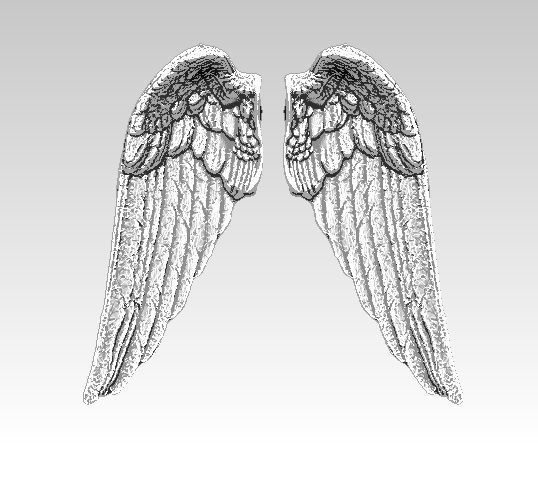 angel bird pair wings 3D print model