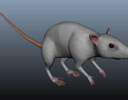 Mouse 3D Model rigged