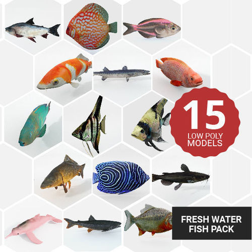 15 freshwater  fish pack 3d model low-poly max obj mtl 3ds fbx stl blend 1