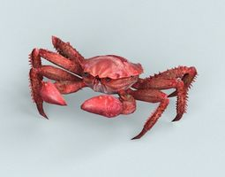 3D model Christmas Island Red Crab