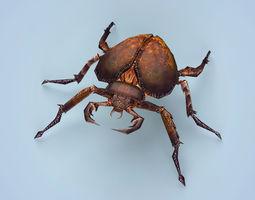 3D model Fantasy Monster Bug