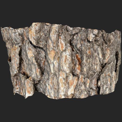 piece of pine bark01 scanned 3d model low-poly max obj mtl fbx 1