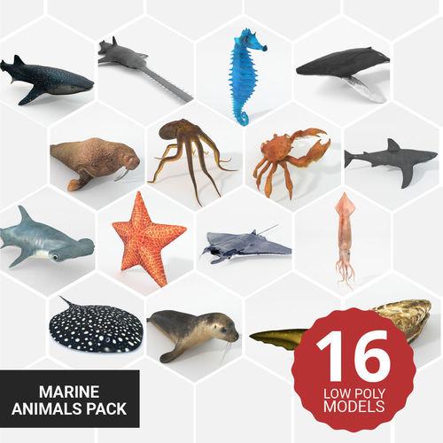 16 marine animals pack - colletion 3d model low-poly obj mtl 3ds fbx ma mb stl blend 1